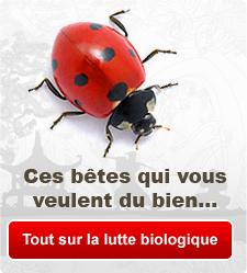 Tout sur la lutte biologique